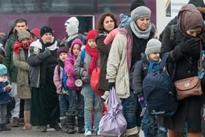 Đa số người dân châu Âu ủng hộ việc tiếp nhận người tị nạn