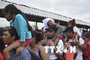 [Mega Story] Chính sách nhập cư hay chiến lược thu hút cử tri?
