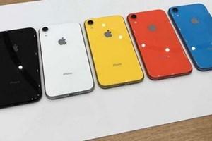 Tờ Nikkei: Apple hủy bỏ kế hoạch tăng sản lượng iPhone XR
