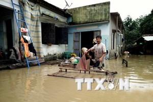 Ngập lụt sâu trên diện rộng vẫn tiếp tục diễn ra tại Bình Định