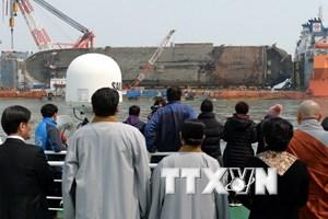 Tìm thấy di hài nghi của một nạn nhân trong vụ chìm phà Sewol