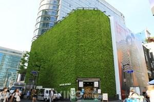 Phân bón hữu cơ Hàn Quốc chào hàng tại Việt Nam thông qua Entech