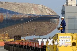 Xác định xương của 1 nạn nhân mất tích trong vụ chìm phà Sewol