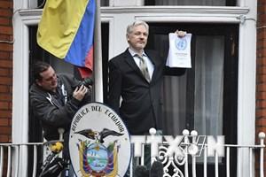 Giới luật sư hoan nghênh quyết định chấm dứt điều tra Assange