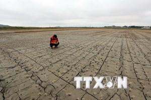 Trên 25% diện tích sẽ khô hạn dù nhiệt độ Trái Đất chỉ tăng 2 độ C
