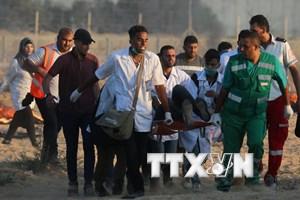 Hơn 180 người Palestine bị thương do đụng độ với binh sỹ Israel