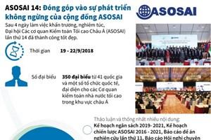 Đóng góp vào sự phát triển không ngừng của cộng đồng ASOSAI
