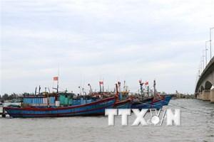 Quảng Trị hỗ trợ trên 25 tỷ đồng cho đội tàu cá khai thác xa bờ