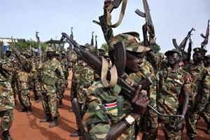 Quân đội Sudan tiêu diệt 110 phiến quân tại Nam Kordofan