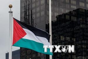 Khoảnh khắc lịch sử thắp sáng hy vọng của người dân Palestine