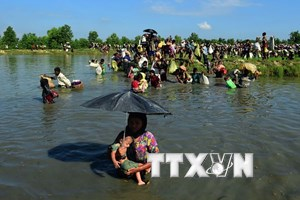 Myanmar cấp thẻ xác thực nhân thân cho 7.000 người ở Rakhine