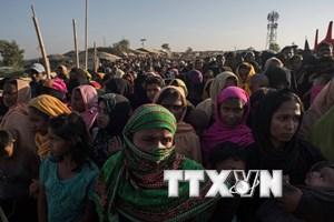 Myanmar cho hồi hương gia đình người Rohingya đầu tiên