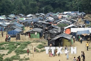 Myanmar khẳng định sẵn sàng tiếp nhận trở lại toàn bộ người Rohingya