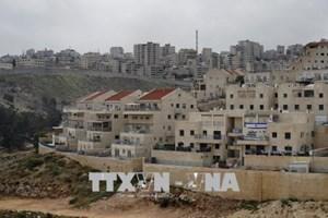 Palestine chỉ trích đề xuất loại Jerusalem khỏi hòa đàm của ông Trump