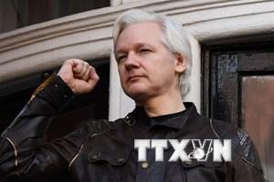 Ecuador và Anh tìm cách chấm dứt bất đồng về Julian Assange