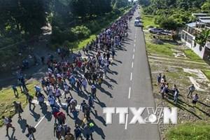Đằng sau động thái điều binh tới biên giới Mỹ-Mexico của ông Trump