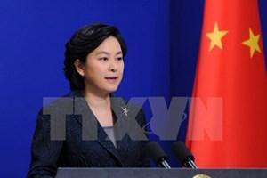 Trung Quốc chia sẻ với Việt Nam khắc phục hậu quả bão Damrey