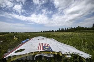 Hà Lan, Australia: Nga phải chịu trách nhiệm vụ rơi máy bay MH17