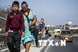 Cha mẹ trong gia đình nhập cư Mỹ trái phép tạm thời chưa bị truy tố