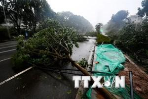 Mưa lớn do bão Mangkhut tiếp tục đe dọa miền Nam Trung Quốc