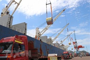 Hiệp định CPTTP: Cơ hội nào cho các ngành hàng Việt?