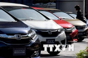 Tập đoàn Honda tạm ngưng sản xuất tại một nhà máy ở Nhật Bản