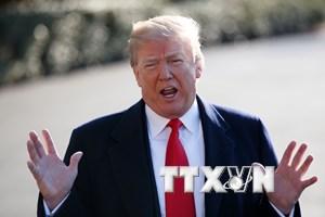 Tổng thống Mỹ Trump nói có thể sớm gặp Tổng thống Nga Putin