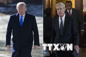 Đội ngũ pháp lý của ông Trump sẵn sàng trả lời câu hỏi của ông Mueller