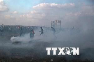 Hamas bác bỏ yêu cầu chấm dứt biểu tình tại biên giới Gaza-Israel