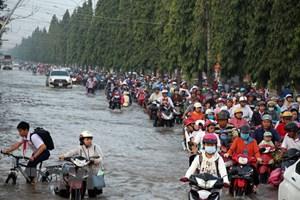 """Ngập lụt ở ĐBSCL: Nguyên nhân từ đỉnh triều """"lịch sử"""" 40 năm qua"""