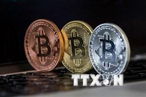 Đồng tiền ảo Bitcoin chưa có dấu hiệu ngừng giảm giá