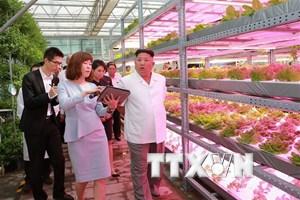 Ông Kim Jong-un thăm Trung Quốc sau khi được Tổng thống Mỹ trả lời thư