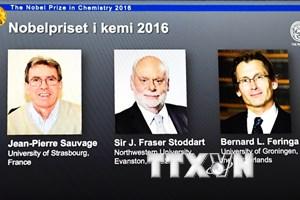 [Infographics] Ba nhà khoa học cùng giành giải Nobel Hóa học 2016