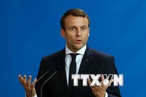 Sự ủng hộ dành cho đảng của tân Tổng thống Macron gia tăng