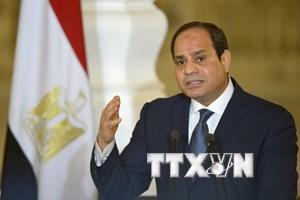 Ai Cập: NEA chính thức tiếp nhận đơn tranh cử tổng thống