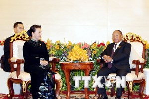 Việt Nam mong muốn Campuchia tiếp tục hỗ trợ cộng đồng người Việt