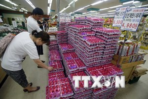 """Tổng thống Hàn Quốc ra lệnh công bố sách trắng về vụ """"trứng bẩn"""""""