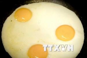 """""""Trứng bẩn"""" nhiễm chất Fipronil đã xuất hiện tại 40 quốc gia"""