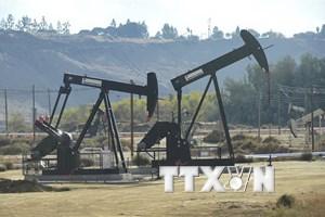 Phố Wall phục hồi kéo giá dầu trên trị trường thế giới tăng khoảng 1%