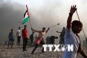 Các nhóm vũ trang Palestine tuyên bố ngừng bắn với Israel
