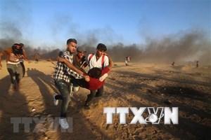 Đụng độ giữa Israel và Palestine khiến 6 người thiệt mạng