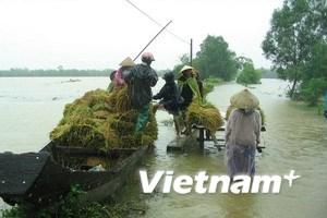 Áp thấp nhiệt đới luẩn quẩn, miền Trung thiệt hại nặng
