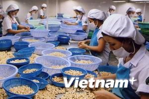 Xuất khẩu nông-lâm-thủy sản giảm gần 9%