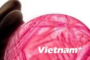"""Nguy cơ """"siêu vi khuẩn"""" vào Việt Nam là rất lớn"""