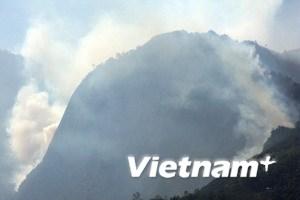 Huy động 2200 người dập cháy rừng ở Sa Pa