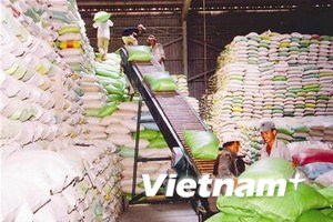 Philippines sẽ mở thầu mua 600.000 tấn gạo