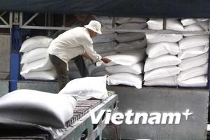 Cần xây dựng thương hiệu cho gạo Việt Nam