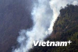 Thêm đám cháy thiêu rụi hơn 10ha rừng ở Lào Cai