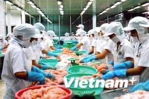 Phục hồi xuất khẩu cá tra sang một số thị trường