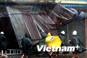 Các địa phương cấp bách phòng chống bão số 11
